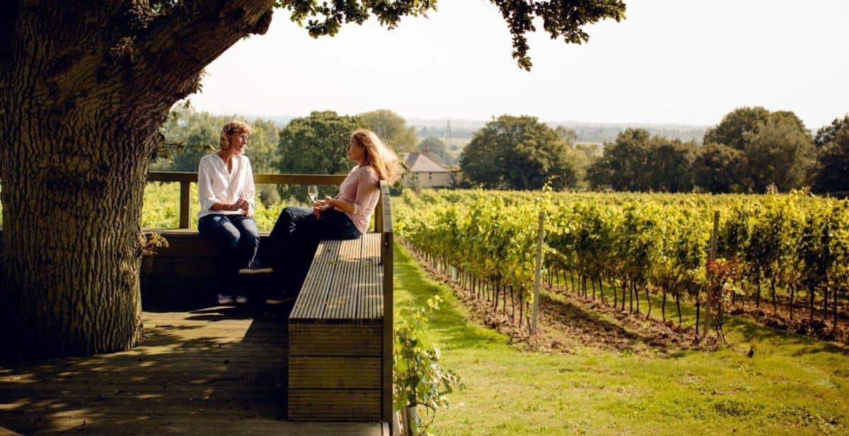 gusbourne vineyard